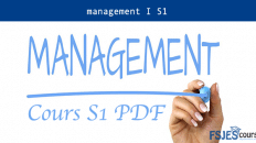 Cours management I