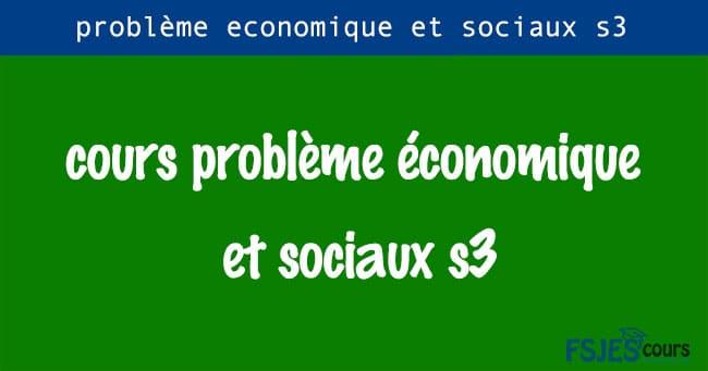 cours problème économique et sociaux s3