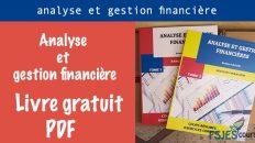 Analyse et gestion financière livre